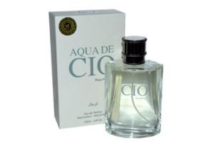Voyage Fragrance Aqua De Gio pour Homme, 100ml (муж)